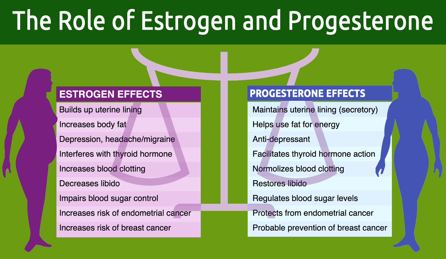 THE ROLES OF ESTROGEN AND PROGESTERONE